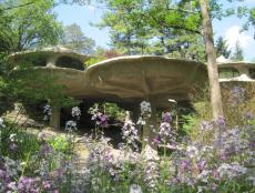 Home Exterior: The Mushroom House in Pittsford, N.Y.