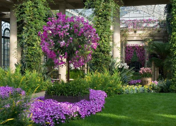 Longwood Gardens Tour
