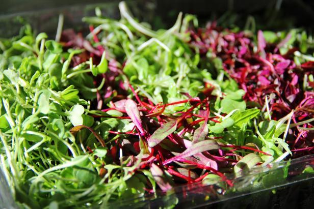 Nutritious Microgreens