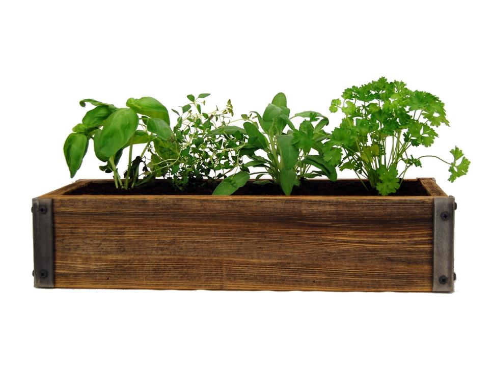 indoor herb planter box