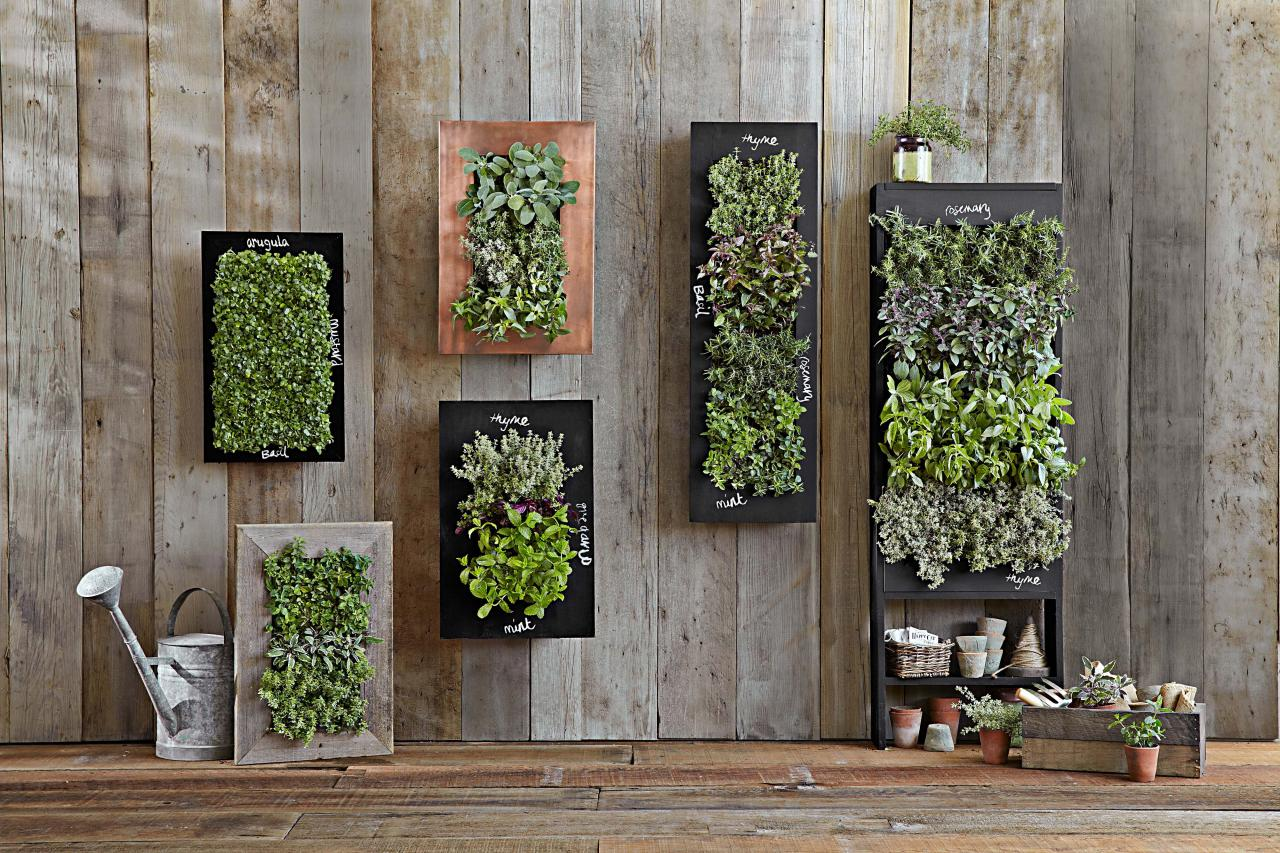 Vertical garden design hgtv for Vertical garden design