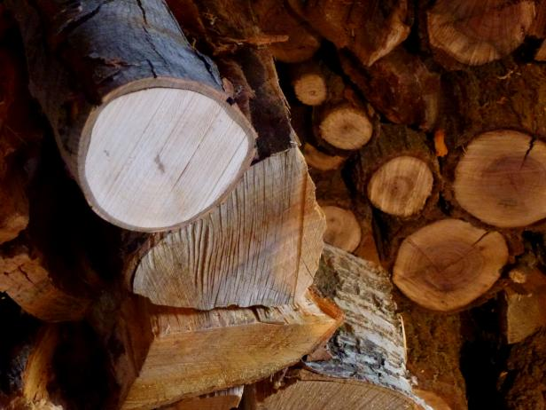 The best firewood for burning hgtv - Put out fire in fireplace ...
