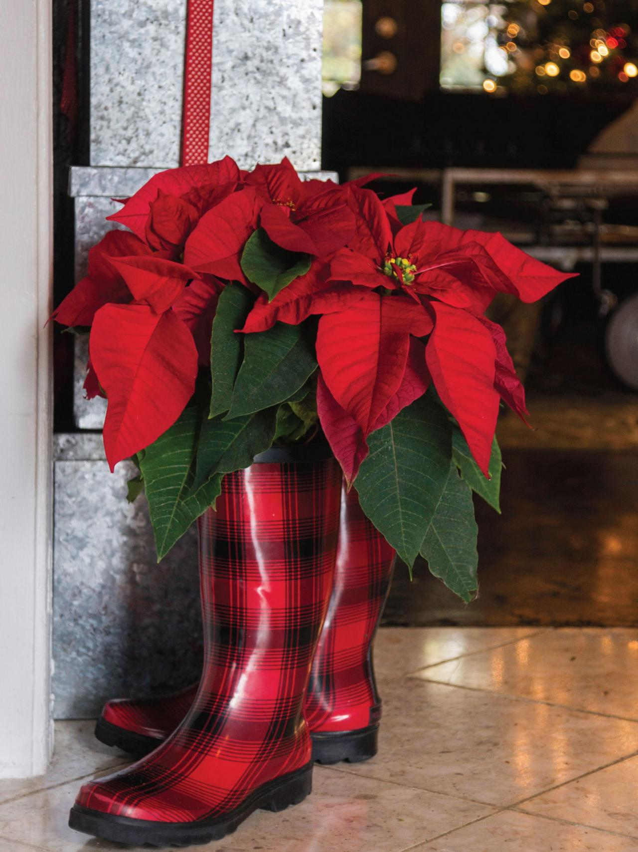 20 ways to decorate with poinsettias for the holidays for Poinsettia arrangements