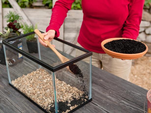 How To Make A Terrarium How Tos Diy