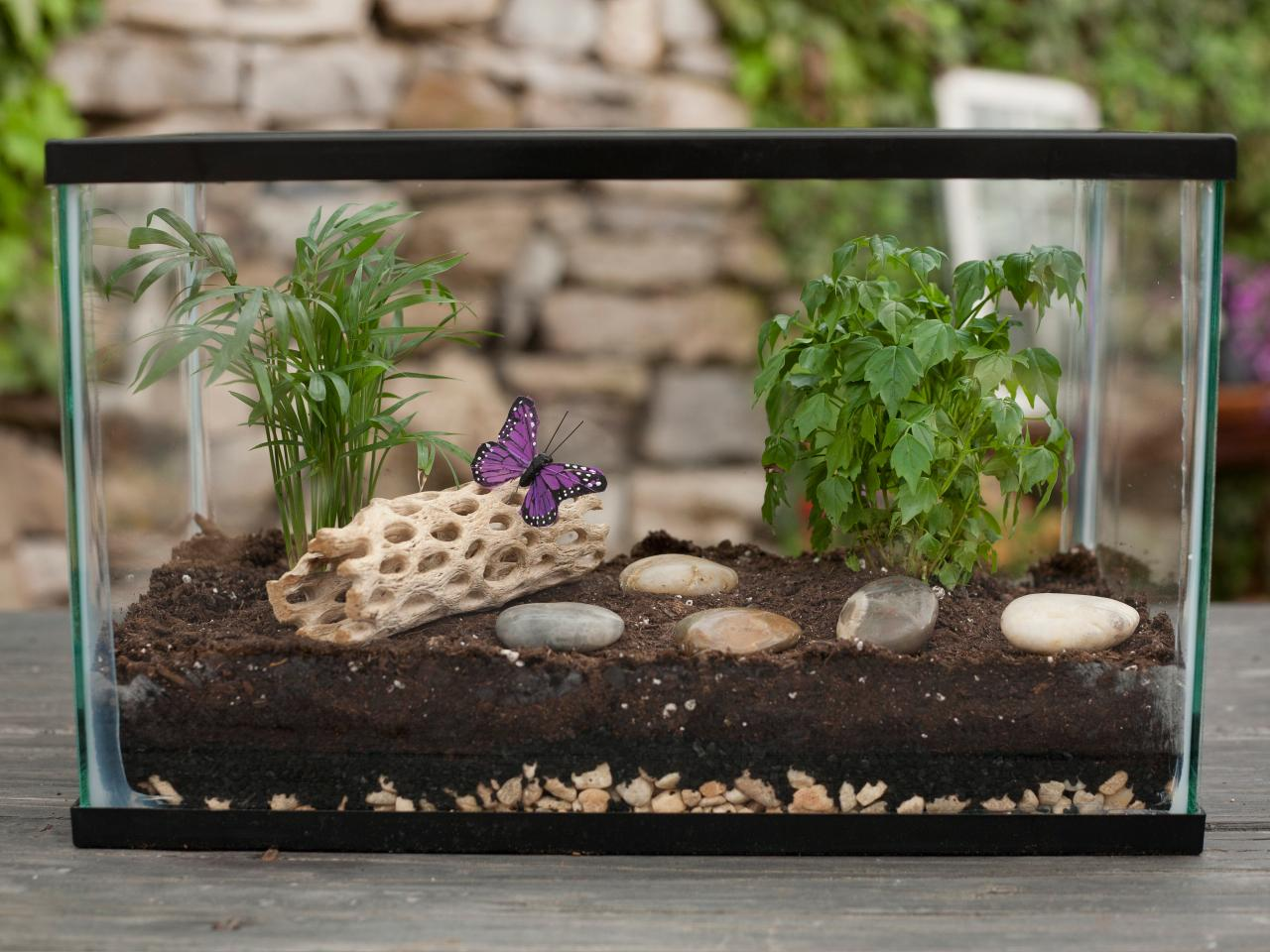 how to make a terrarium how tos diy