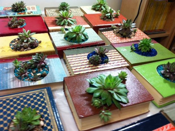 Succulent Book Planters