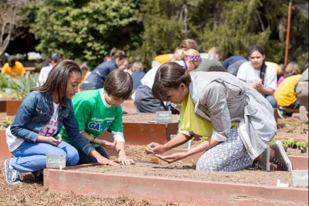Planting the White House Garden