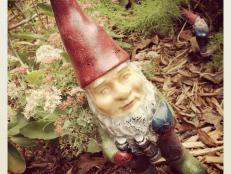 Garden Gnome and Friend