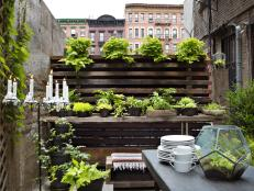 Urban Garden Ideas find this pin and more on urban garden Tour A Rustic New York Patio 8 Photos