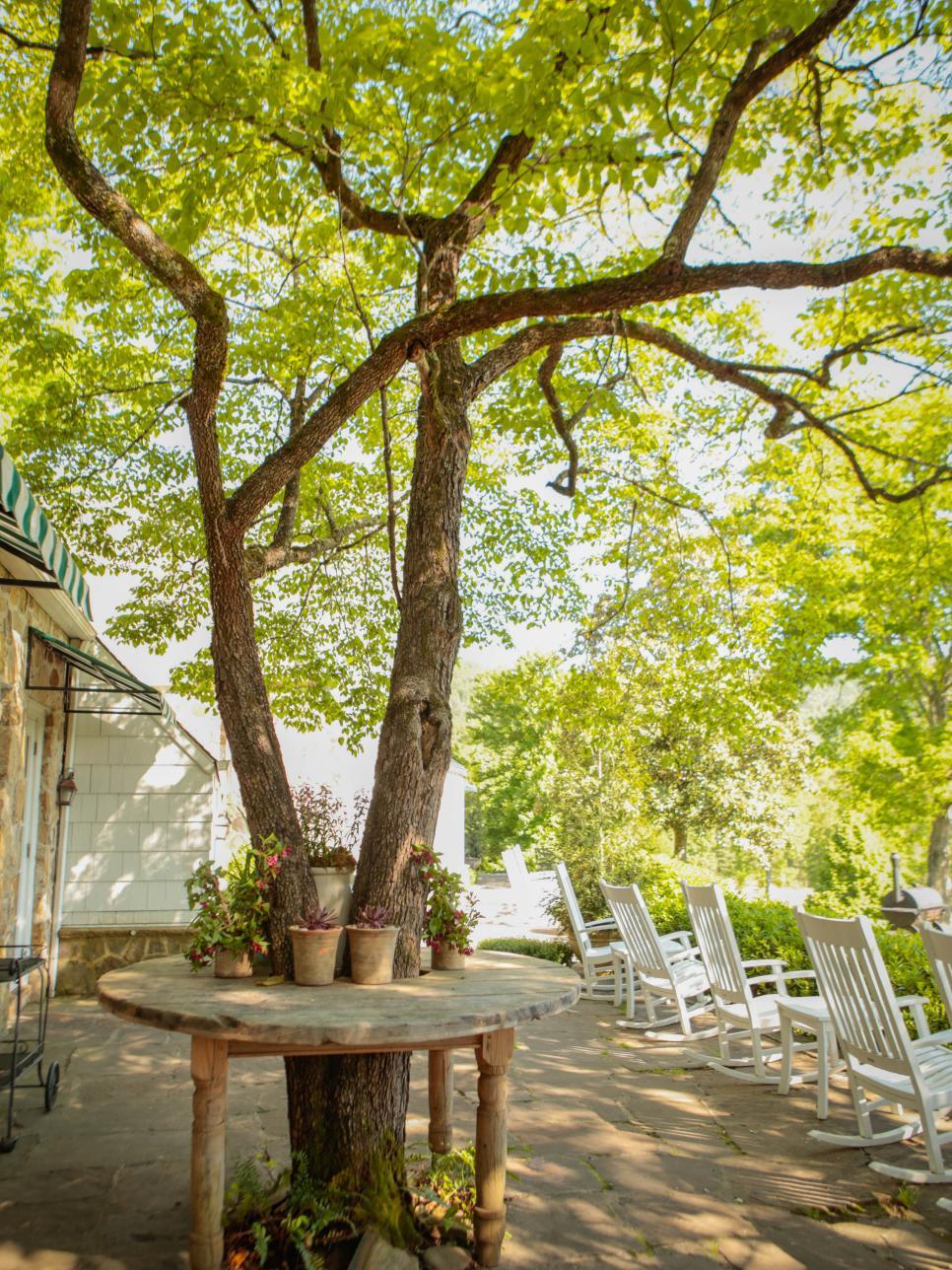 Shade Garden Ideas | HGTV