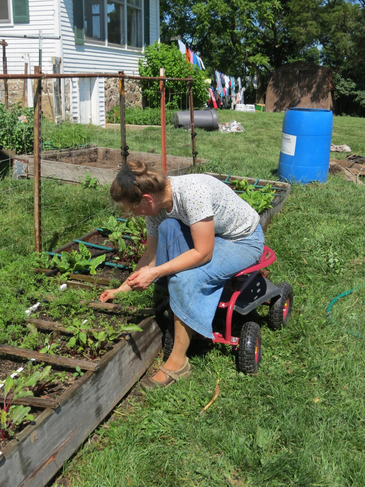 Adaptive gardening techniques for gardeners with for Gardening tools for seniors
