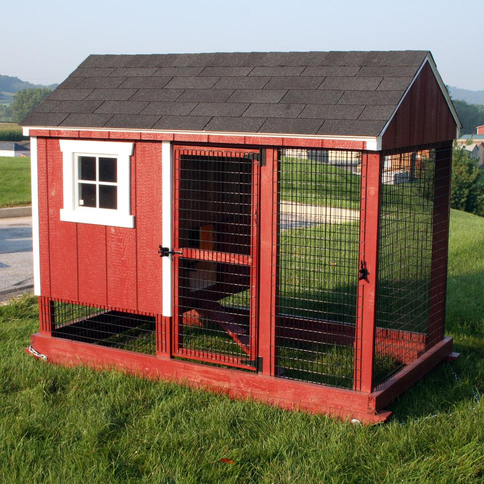Amazing chicken coop design ideas hgtv for Chicken coop size for 6 chickens