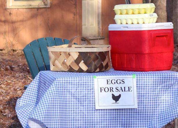 Selling Backyard Chicken Eggs