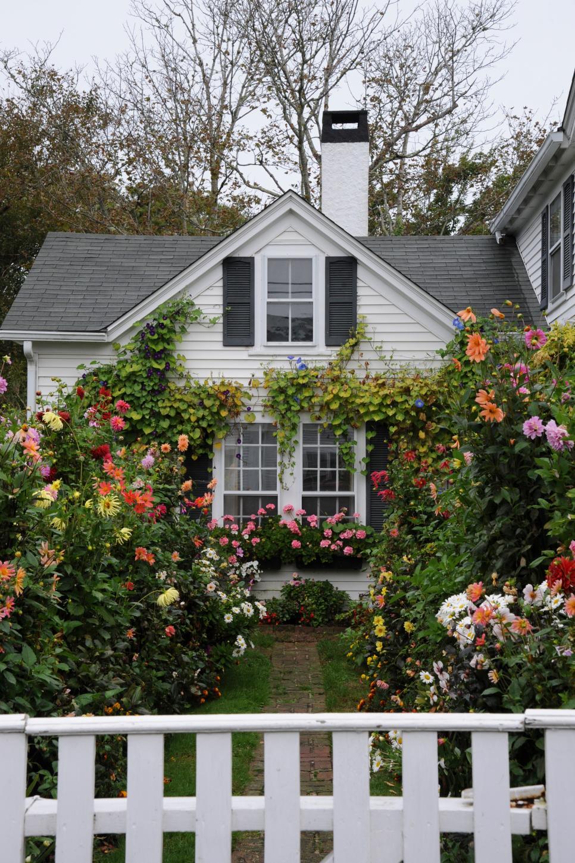 Beautiful photos of summer gardens hgtv for House garden images