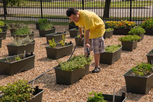 Hands-on Gardening