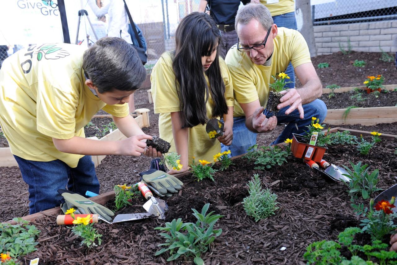 How To Start A Community Garden Hgtv
