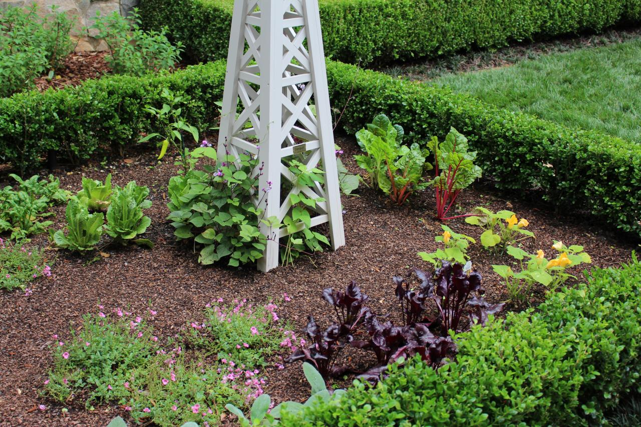 Small vegetable garden plans with flowers hgtv for Compact garden designs