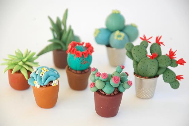 Make Tiny Plants For Your Fairy Garden Hgtv