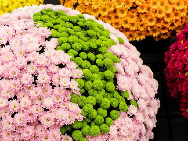 Fall Gardening Tips Ideas HGTV