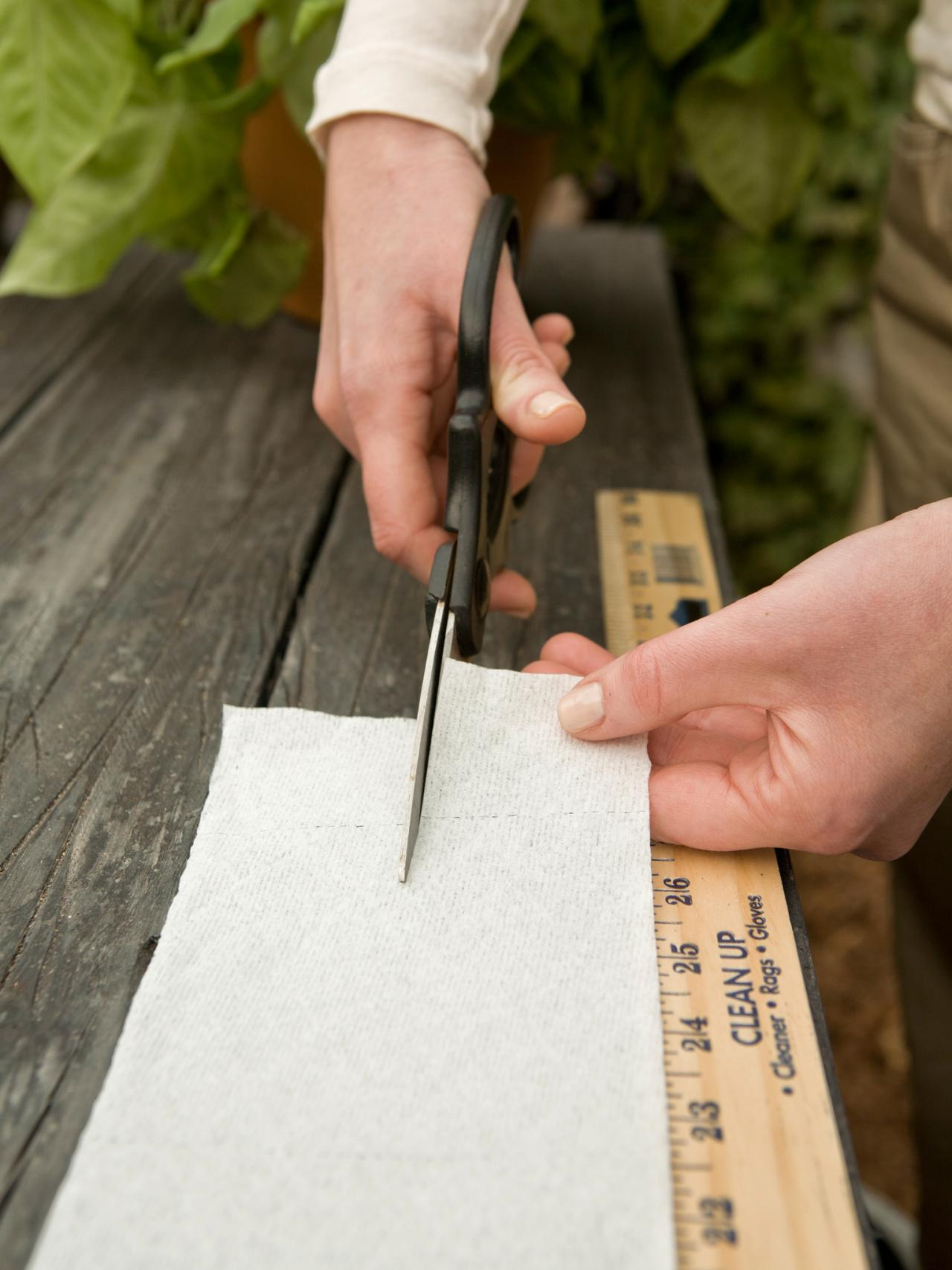 Making a seed strip for planting