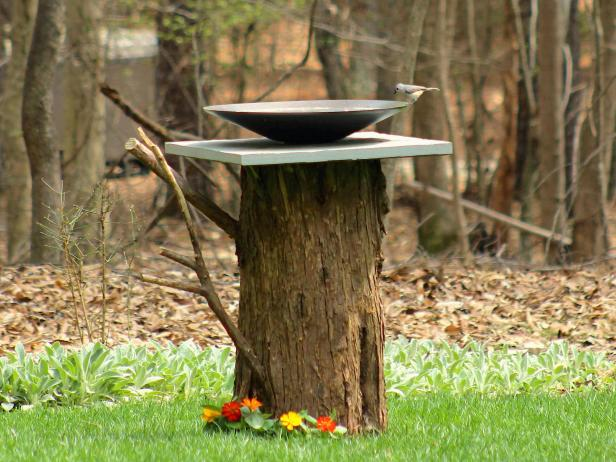 Diy Birdbath From An Old Tree Stump Hgtv