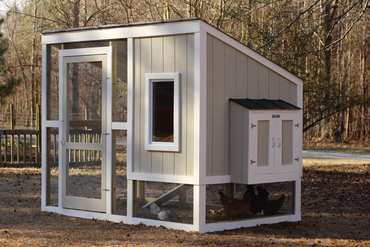 how to build a backyard chicken coop hgtv