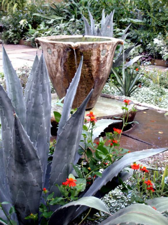 Ideas and Suggestions for Drought Tolerant Landscaping