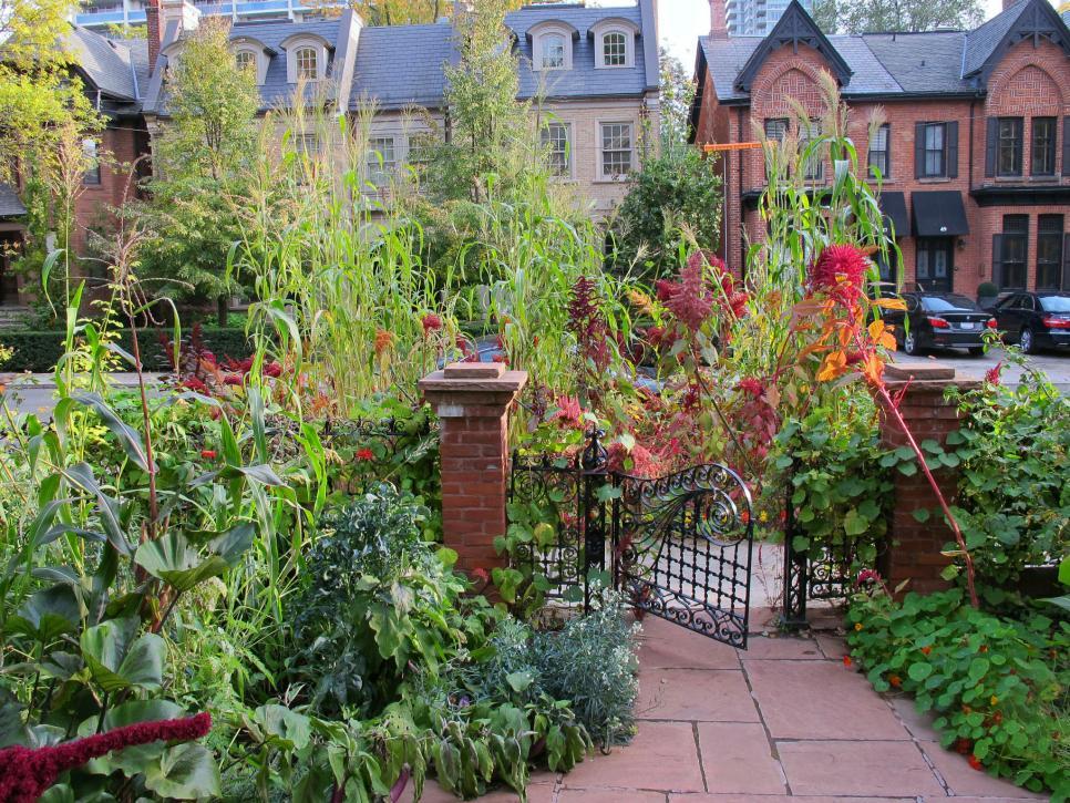 Tips For A Small Bountiful City Garden Hgtv