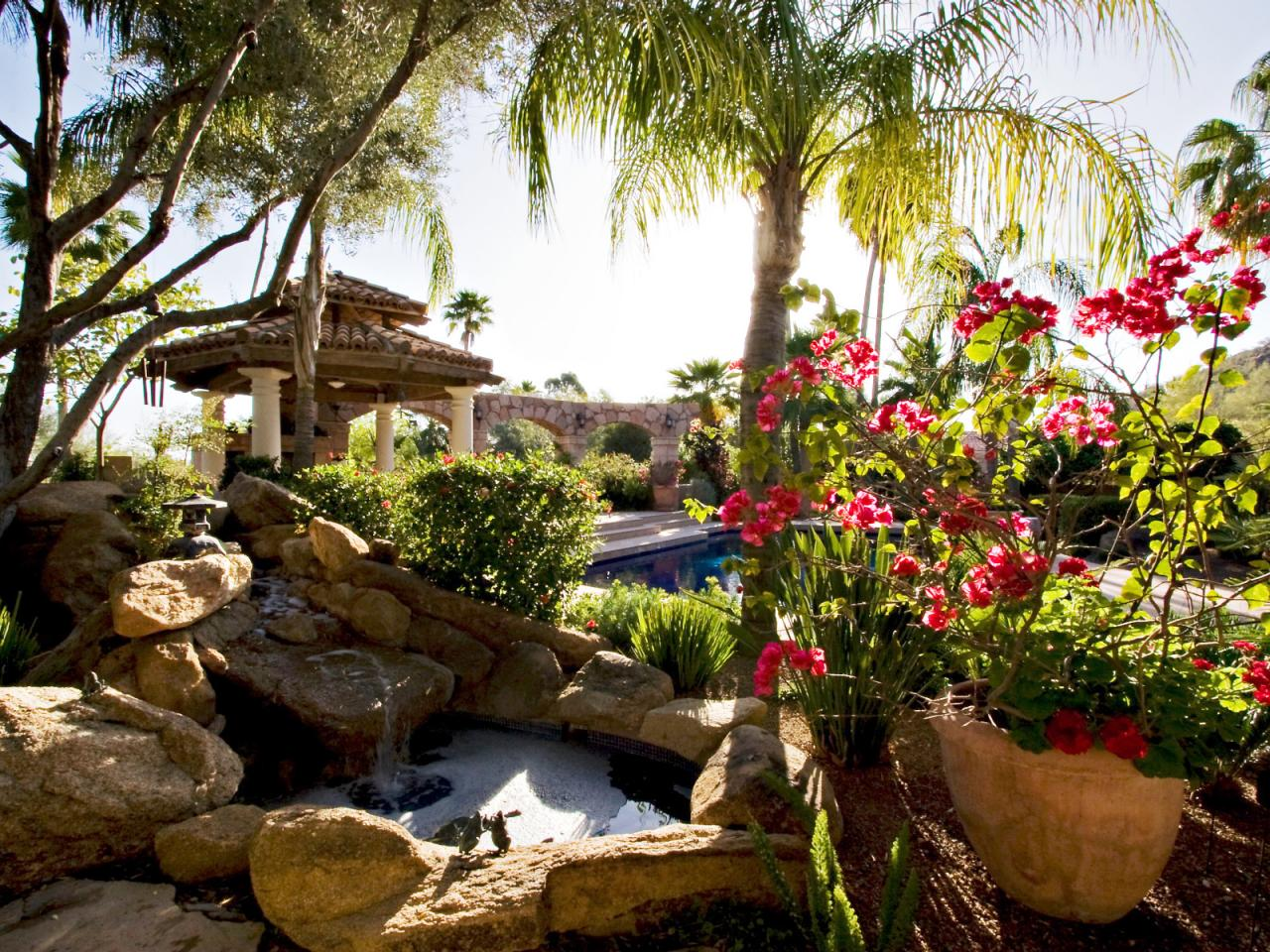 Landscaping needs and wants outdoor design landscaping for Tropical landscape