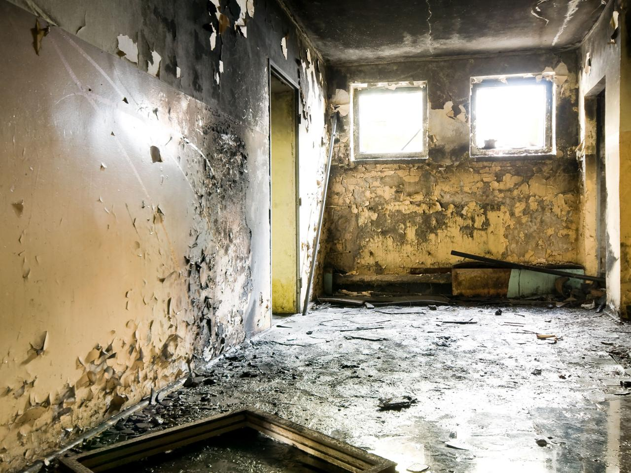 Black Mold In Walls black mold symptoms and health effects | hgtv