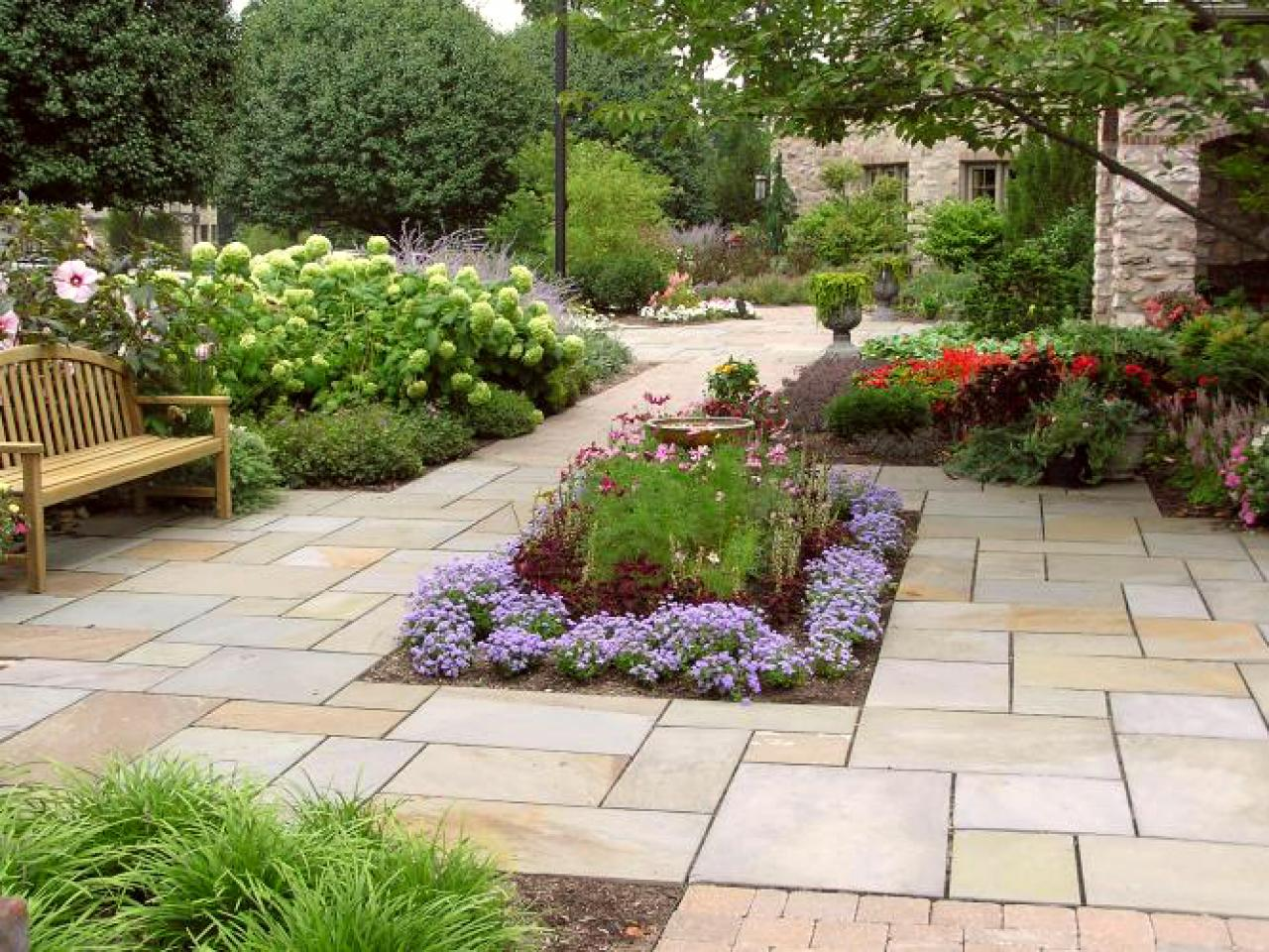 Plants for your patio hgtv for Outside landscape design