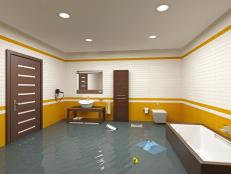 TS-151564672_flooded-bathroom_s4x3