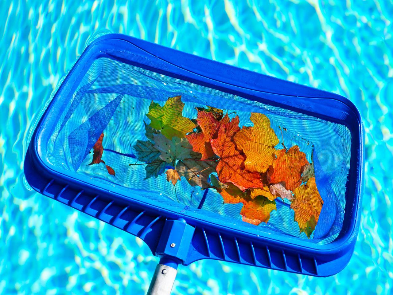 Swimming Pool Maintenance Hgtv