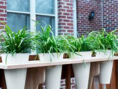 BPF_original_outdoor-window-box-pots_beauty_3x4