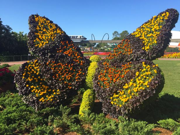 Giant Butterfly Topiary