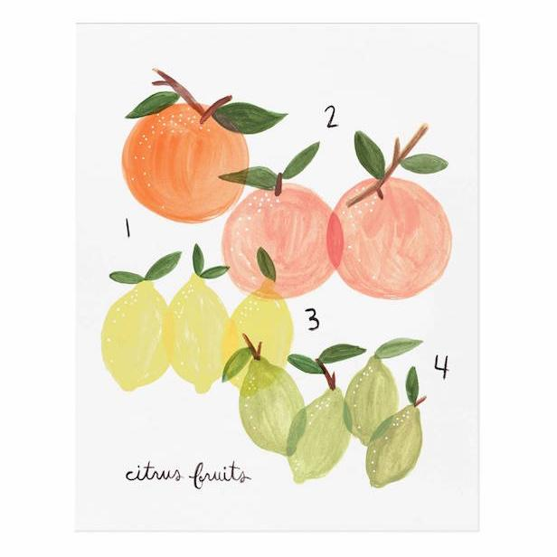 Citrus Print