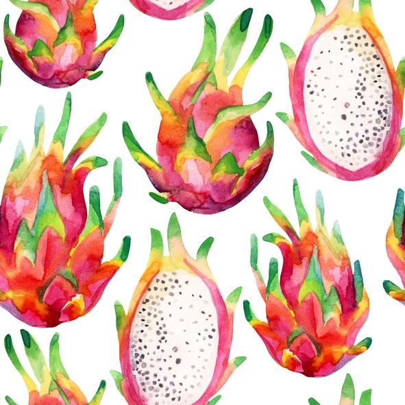Dragon fruit Watercolor