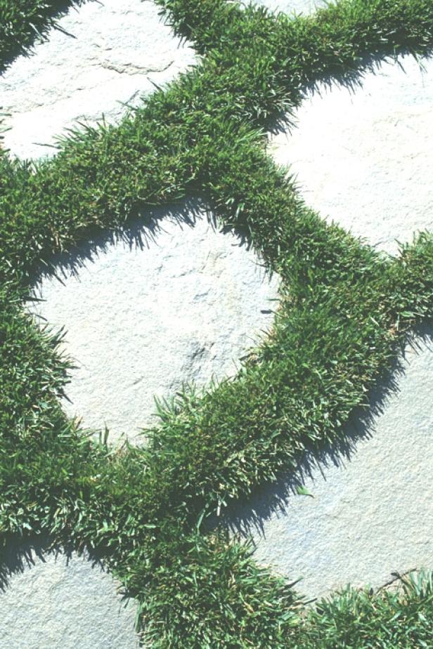 path_stones_grass