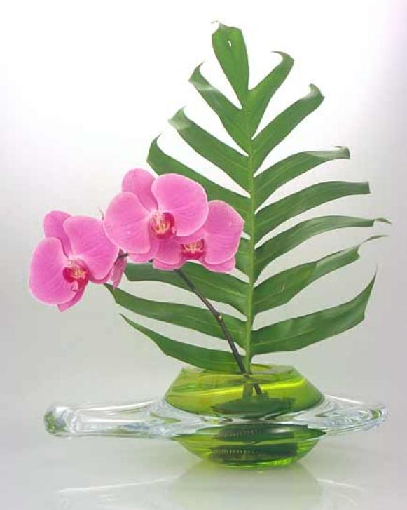march06decnews_flowerpower_ikebana_V
