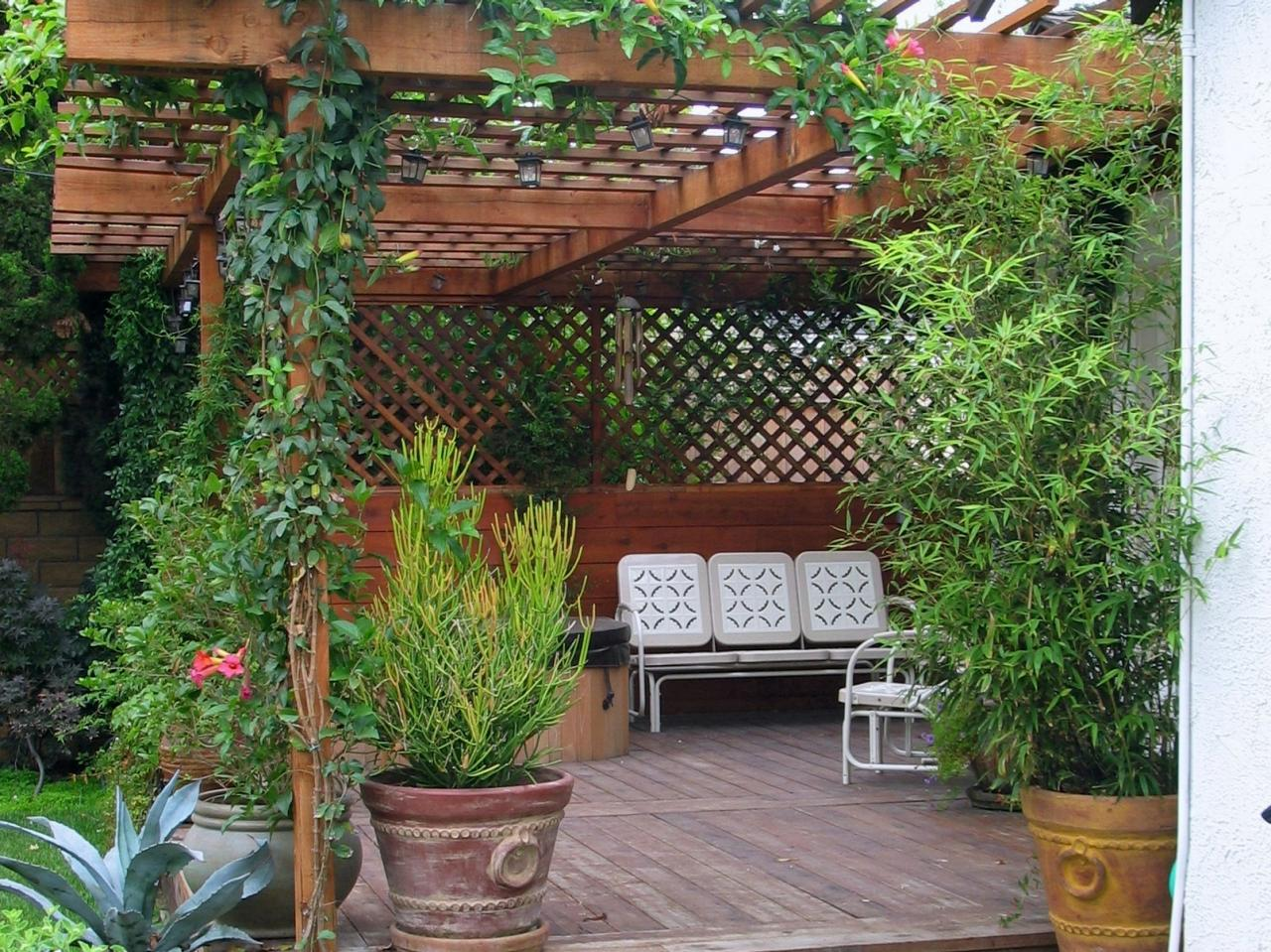 How to build a wood pergola hgtv for Outside landscape design