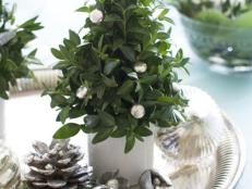 Mini Christmas Tree Centerpiece