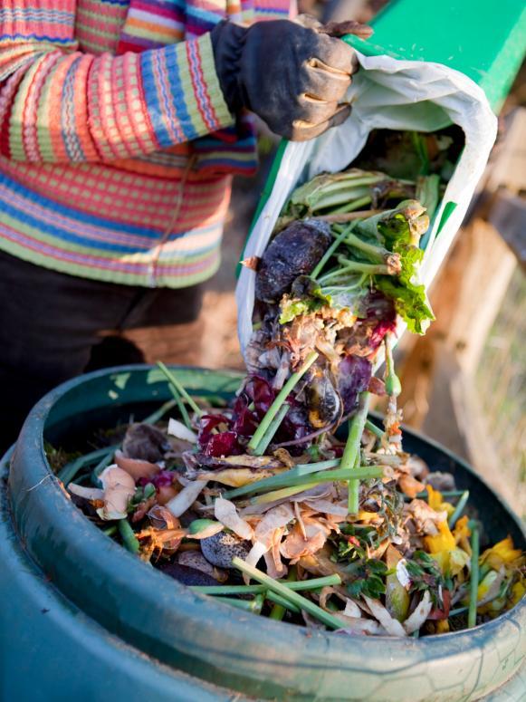 Kitchen Scrap Compost