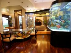 Unbelievable Home Aquarium Doubles as Bar