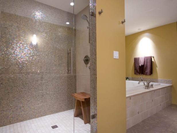Master Bathroom Shower and Bathtub