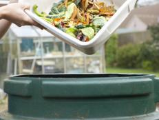 Organic Waste Disposal and Recycling in Australia