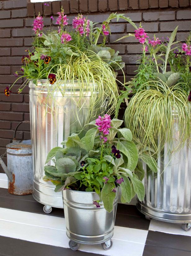 Container Garden in Galvanized Metal Trash Cans