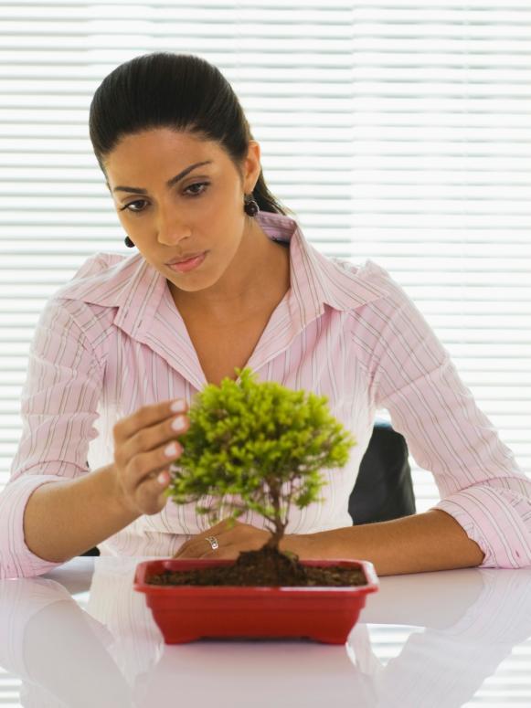 Woman With Bonsai Plant