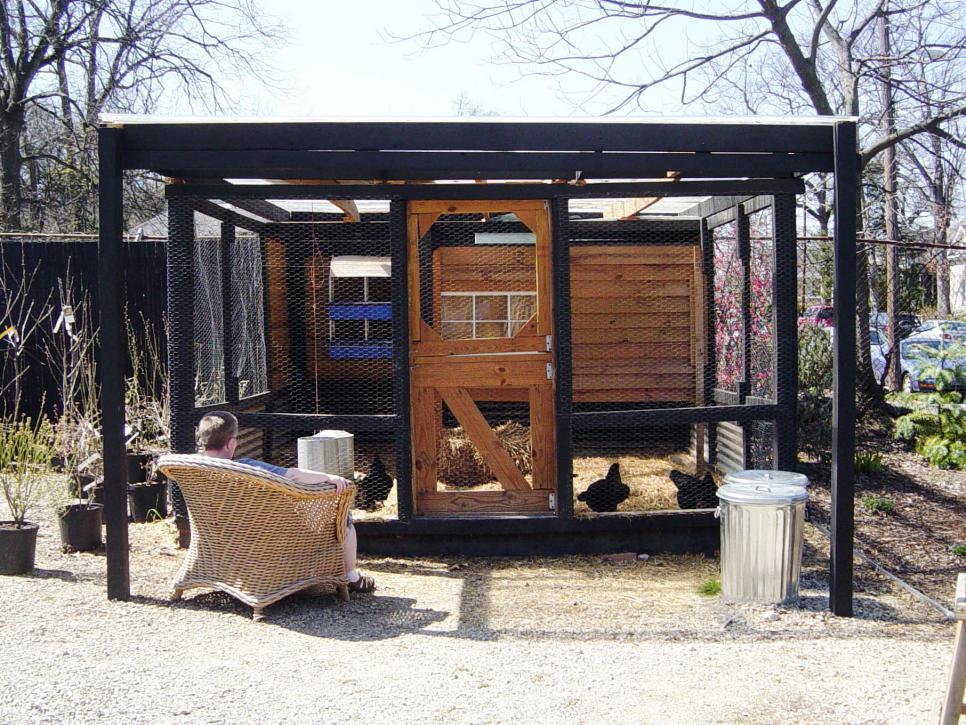 chicken coops for backyard flocks hgtv