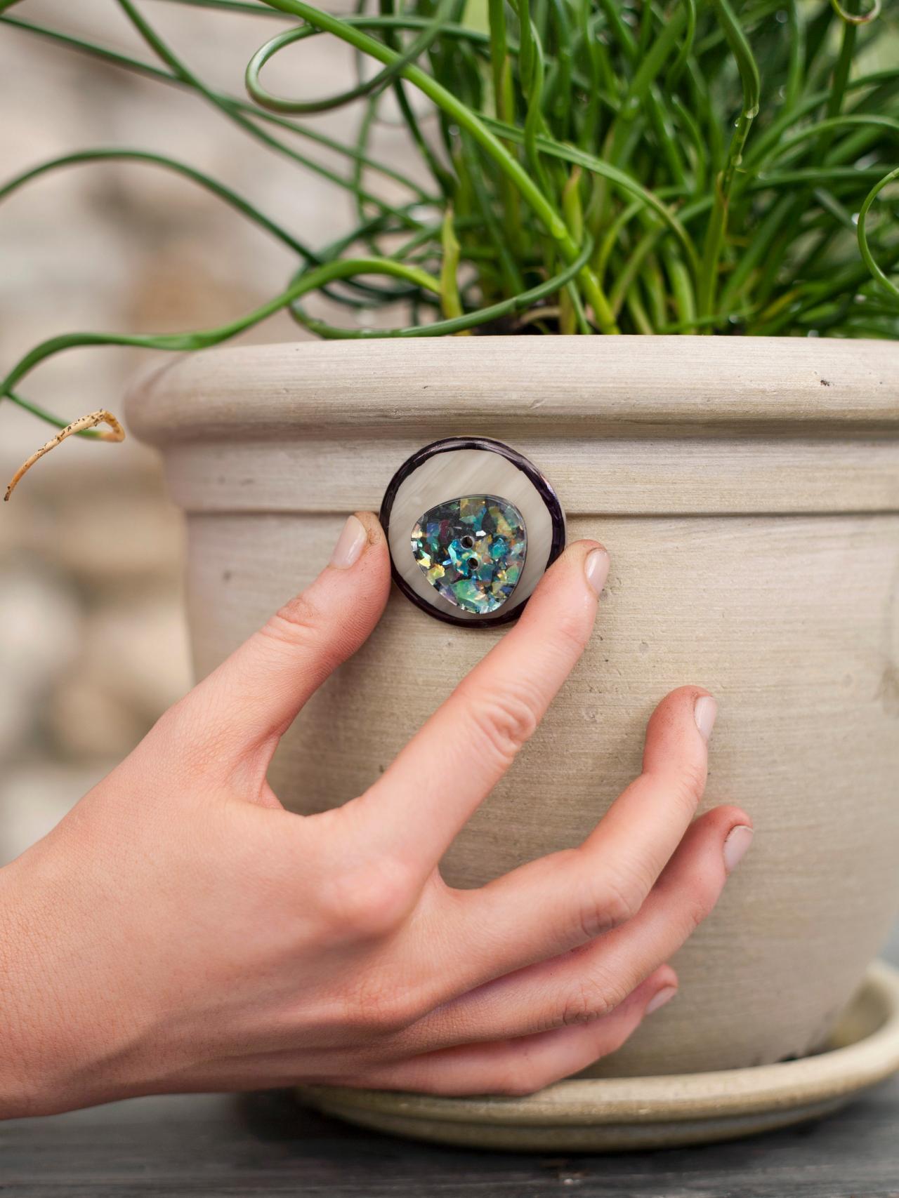 Garden Plant Pot Arrangement
