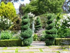 French Country Garden With Topiaries